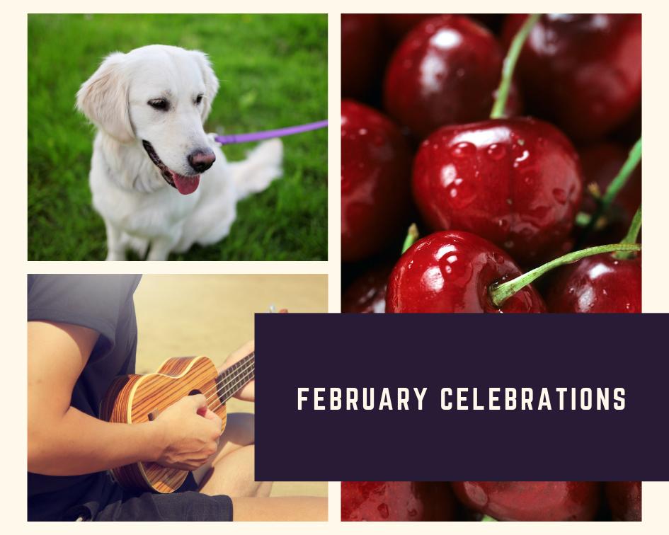 February Celebrations