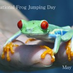 National Frog Jumping Day