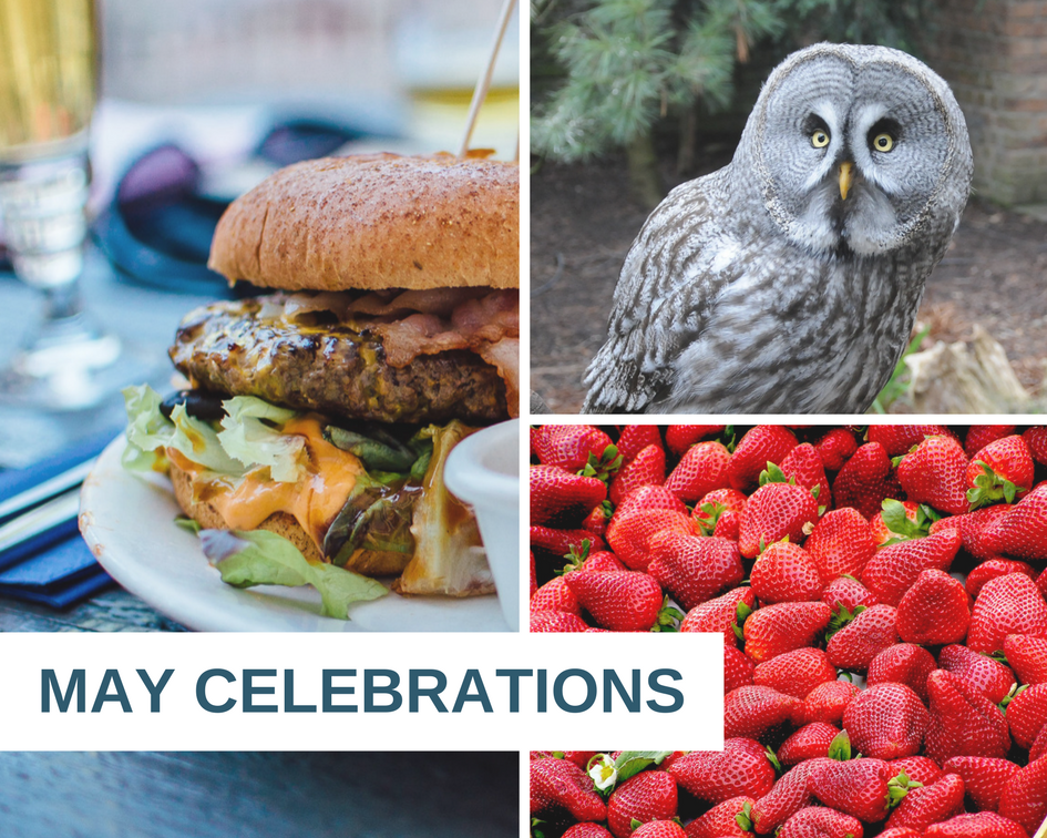 May celebrations include Hamburger Month, Strawberry Month and Bird Day